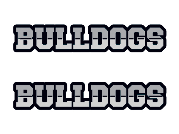 Bulldogs team fan