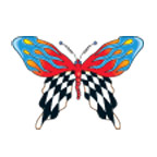 Race Flags Butterfly