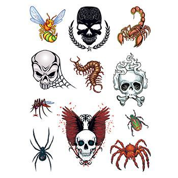 Skulls and Bugs