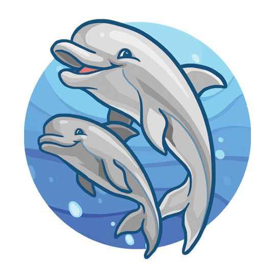 Cartoon Two Dolphins 3