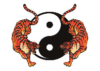 Yin Yang and 2 Tigers